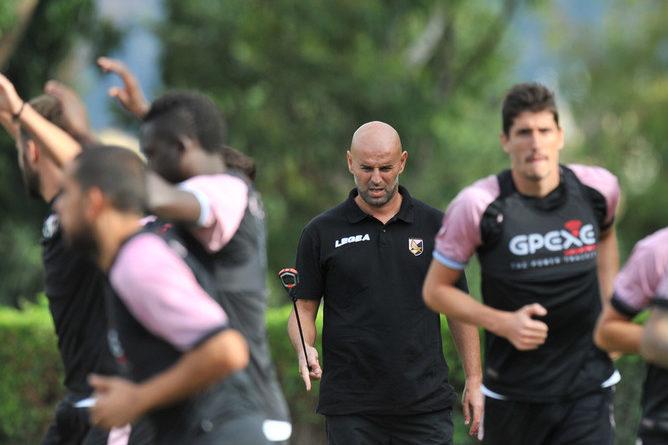 Palermo, ripresa degli allenamenti in vista della Salernitana. Nestorovski…