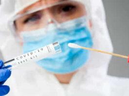 Coronavirus bollettino