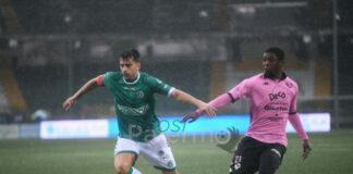 Palermo Broh