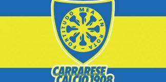 carrarese