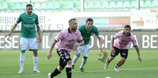 Palermo play off